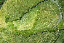 zöldségtárolás