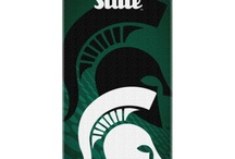 Accessories / by Michigan State University Alumni Association