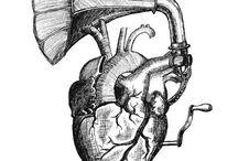 Heart/Corazón