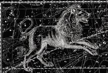 Horoscop leu iunie