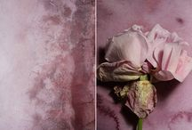 Iris Velghe