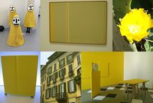 Colours project
