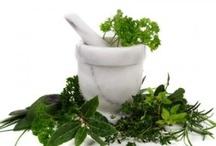 herbalist study