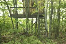 Treehouse→