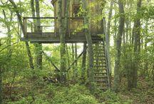 Treehouse→