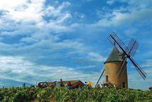Vinícolas pelo mundo / Vinícolas pelo mundo, vinhos, leblog, viagens, gastronomia, comidas, bebidas