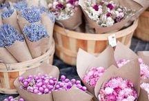 Fresh Flowers / by Alyssa McLamb