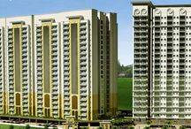 Greater Noida Properties / Properties in Greater Noida by Signoma Properties