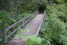 Hiking pennsylvania / by Julie Henderlight