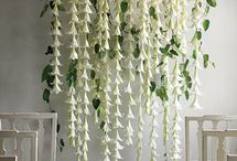Flower backdrops and suspended flowers