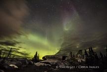 Northern LIghts, Winter Nights