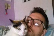 #cat #love #piumina
