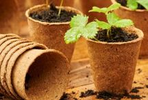 Grow It products / The Grow It range covers fibre pots, growhouses, planters, plant supports and much more.