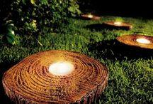 Tree stump - trunk - wood log