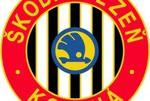 Škoda, Sport a kluby