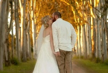 Tropical North Queensland Wedding / For inspiration of places to hold a wedding in and around Cairns, Queensland Australia