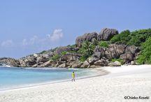 seychelles / Indian Ocean!