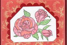 Nature/ Rose
