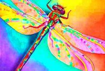 Dragonfly Stuff / by Brandi Rood