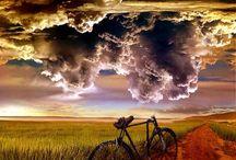 Bicicletas / by Margarita Maria Larrarte Echeverry