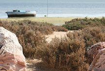 Tunesien – Die gefährdete antike Stadt Meninx auf Djerba / Im Osten der tunesischen Insel Djerba liegt die antike Stadt Meninx. Sie ist ein erschreckendes Beispiel für eine Vielzahl archäologischer Fundstellen der Insel, die schutzlos der Erosion und der Plünderung durch Raubgräber ausgesetzt sind. Dabei ist sie schon mehrmals in den Fokus von europäischen Archäologen oder UNESCO geraten. Mehr: http://archaeologieblog.de/tunesien-meninx-djerba/