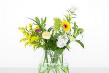 bloomon X Unsere Blumen der Woche / Hier zeigen wir Dir regelmäßig unser Bouquet der Woche. Lass Dich von den prächtigen Farbkombinationen unserer rebellisch arrangierten Bouquets inspirieren oder einfach nur verzaubern.