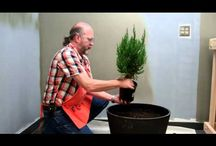Home Depot DIY projects and videos  / Many tips and diy how to videos to help with projects.
