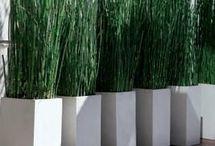 Idées deco jardin