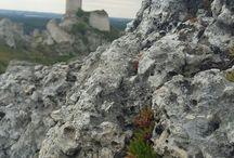 Jura Krakowsko-Czestochowska: drugie życie zamku Olsztyn