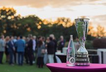 The Evian Championship -  20th anniversary / From September 11th to 14th 2014, the best women's players will take the challenge in one of Europe's most dazzling golf courses in Evian-les-Bains, surrounded by the beautiful alpine region famous as the source of evian® mineral water. / by evian