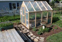 Greenhouse Goodies