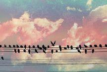 Let's get free!!