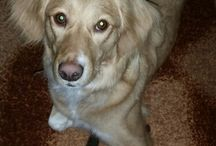 my dogg!!