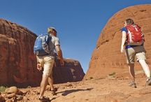 Uluru Tours from Sightseeing tour / Uluru Tours from Sightseeing tour