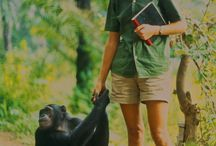 The Connector December 2017 /  Happiness is a state of mind that one must accomplish. In this issue we feature the legendary Primatologist Jane Goodall, the Happiness Index by Dr. Peter Corning and a Chance Encounter with Doris Lessing. Happy Holidays!