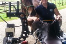 Schleese Certified Saddle Fitters / Schleese Certified Saddle Fitters / Certified Saddle Ergonomists in Action