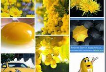 палитра желтый