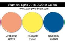 Incolor Stampin' Up! 2018/2020
