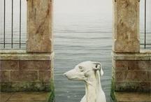 sighthound art/old masters