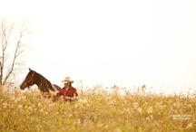 Horses to LOVE