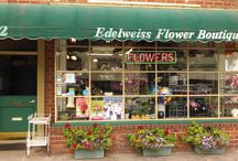 Edelweiss Flower Boutique Store Front / Here is a recent photo of our shop that has been in Santa Monica for over 60 years!