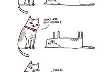 Yoga Funnies
