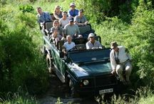 Safari Guide & Field Guide Courses / Passionate about nature, and want to learn more?