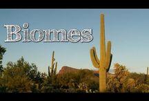 Home School : Science Biomes