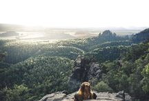 Take a break, chill, enjoy the view and get inspired by nature! Would you hang out there?