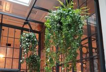 Artificial Hanging Displays - Interior / Decorative Interior Hanging Displays with Artificial Foliages