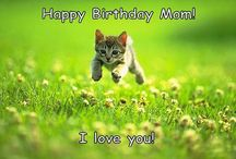 Happy Birthday Meme / Funny Happy Birthday Meme for Mom, Sister, Guys or Husbands. Different and unique happy birthday meme's are about dogs, cats, girl's and men. - http://www.myhappybirthdaywishes.com/happy-birthday-memes/
