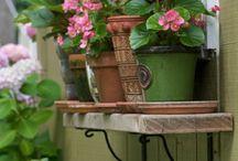 ஜ۩✿•✿Window Gardens✿•✿ஜ۩ / I love to see beautiful flowers and greenery around a window or on a balcony.