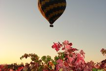 Fall In Napa Valley / Fall is a beautiful time of year to fly above the valley!