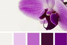 End of 2014 - Pantone year of Radiant Orchid